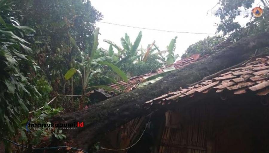 Rumah Warga Nagrak Sukabumi Hancur Tertimpa Pohon Tumbang