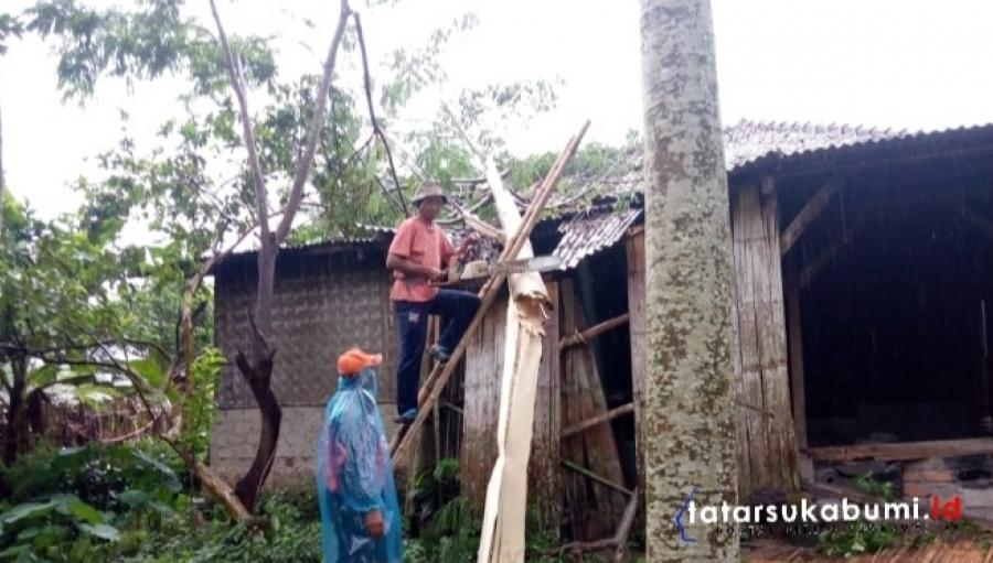Pohon Tumbang Timpa Rumah Warga Jampangtengah