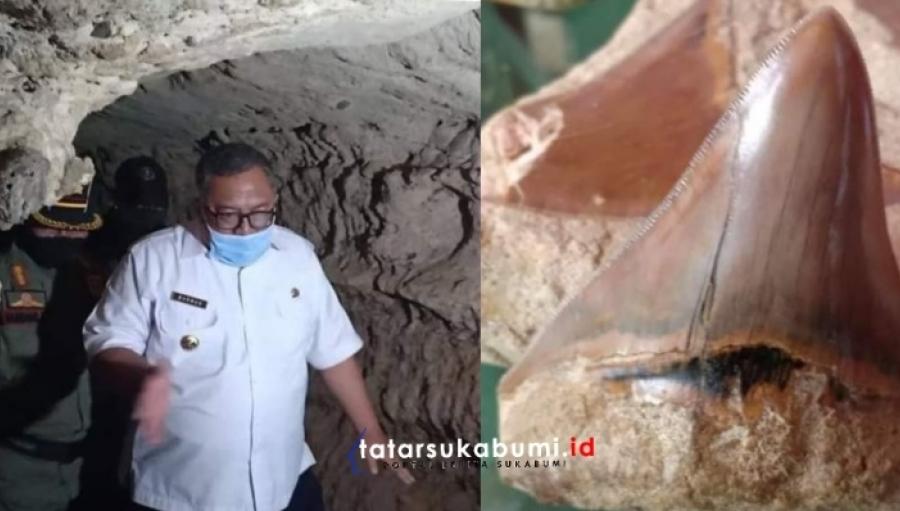 Bupati Sukabumi Tinjau Lokasi Penemuan Fosil Hiu Purba Megalodon di Surade