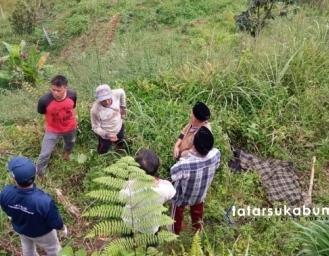 Jenazah Pria Ditemukan di Areal Kebun Kabandungan Sukabumi