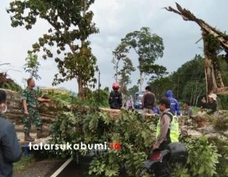 Proses Evakuasi Pohon Tumbang di Ubrug Sukabumi