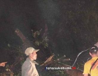 Pohon Tumbang Tutup Akses Jalan Palabuhanratu Surade