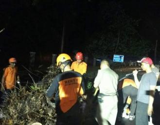 Jalan Raya Palabuhanratu - Cisolok Tertutup Pohon Tumbang