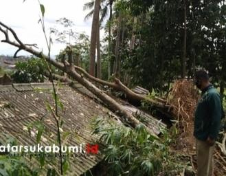Pohon Tumbang Timpa Rumah Warga di Cisaat Sukabumi