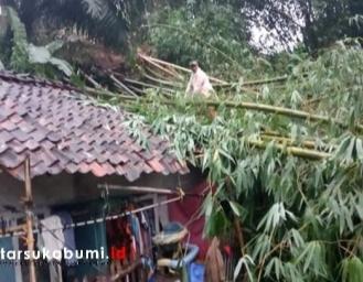 Dua Rumah Tertimpa Pohon Tumbang di Sukabumi