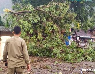 Pohon Tumbang Timpa Kabel, Desa Cidadap Simpenan Mati Listrik