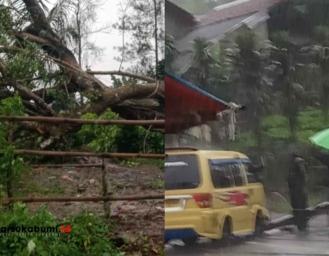 Beruntun Pohon Tumbang Timpa Pos Satpam Tiang Listrik Timpa Angkot Palabuhanratu