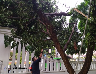 Cuaca Ekstrem Batang Pohon di Gedung Pendopo Sukabumi Tumbang